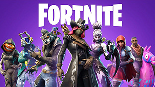 Fortnite Battle Royale Collection